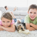 kids and dog dry carpet cleaning service Sydney from Carpet Cleaning Authority
