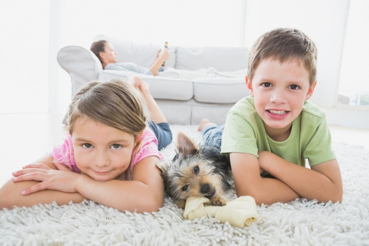 kids and dog dry residential carpet and rug cleaning service Sydney from Carpet Cleaning Authority