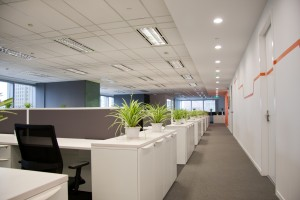 image of office for commercial carpet cleaning from Carpet Cleaning Authority