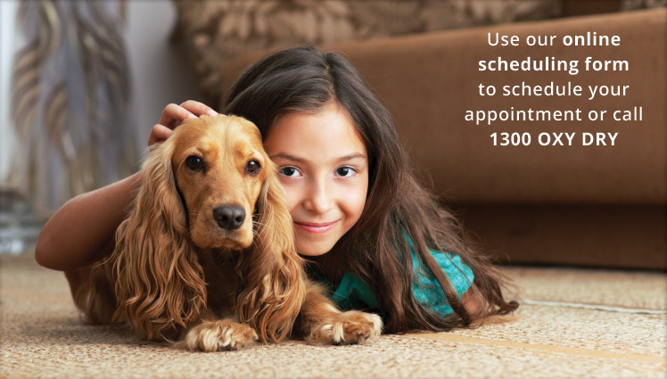image of girl and dog with wording use our online scheduling form to schedule your appointment or call 1300 oxy dry from carpet cleaning authority